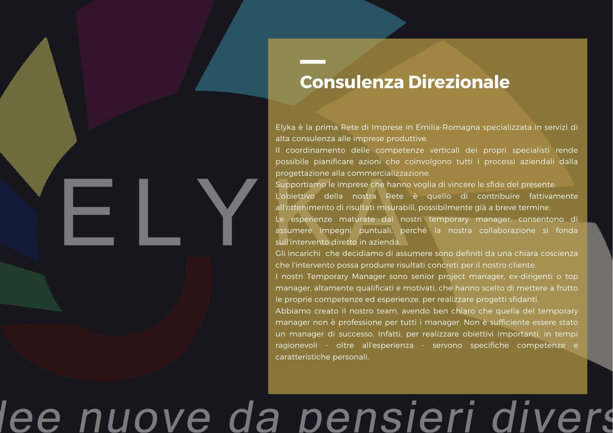 Consulenza direzionale Elyka
